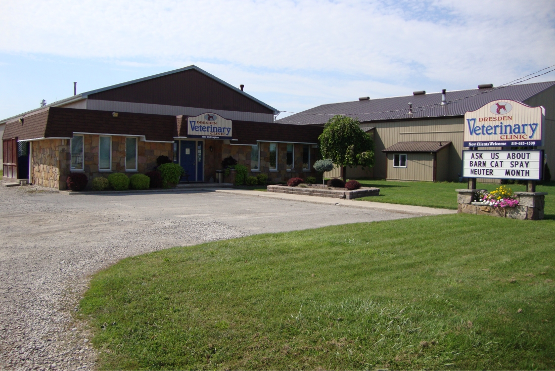 Exterior of Dresden Veterinary Clinic building