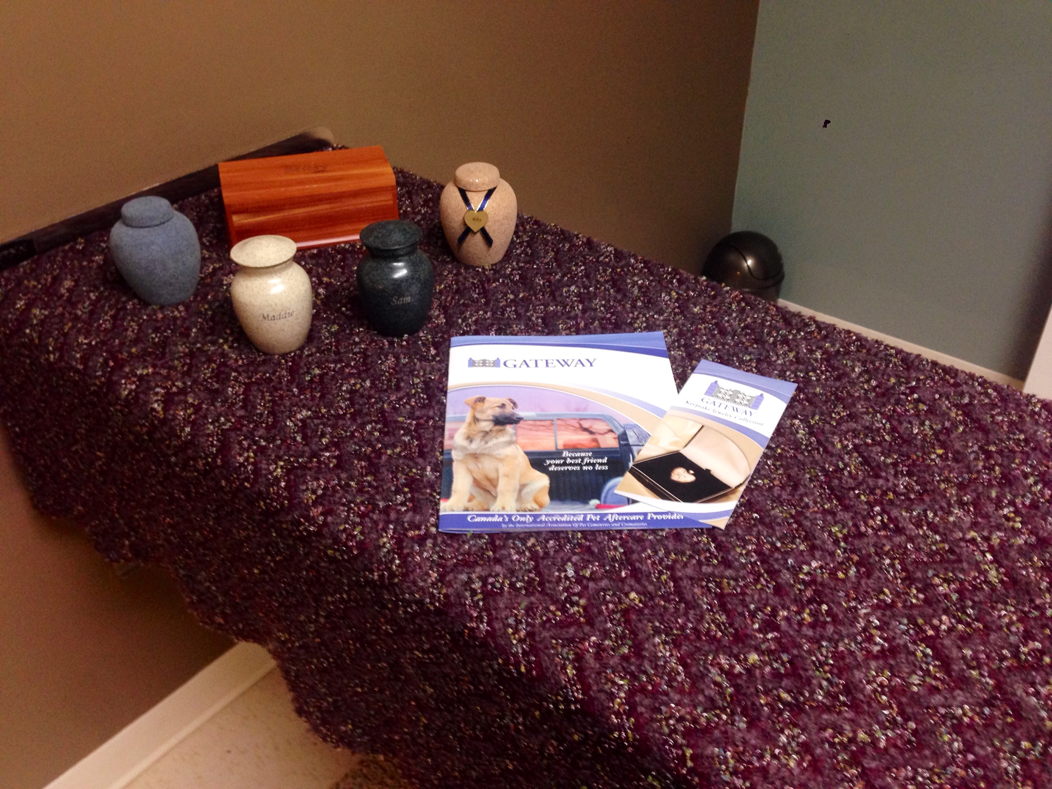 Table with pet aftercare brochures at Merritt Animal Hospital